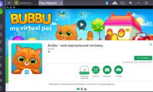 bubbu-2